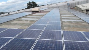 Some of the 200 solar panels installed on the Centristic roof